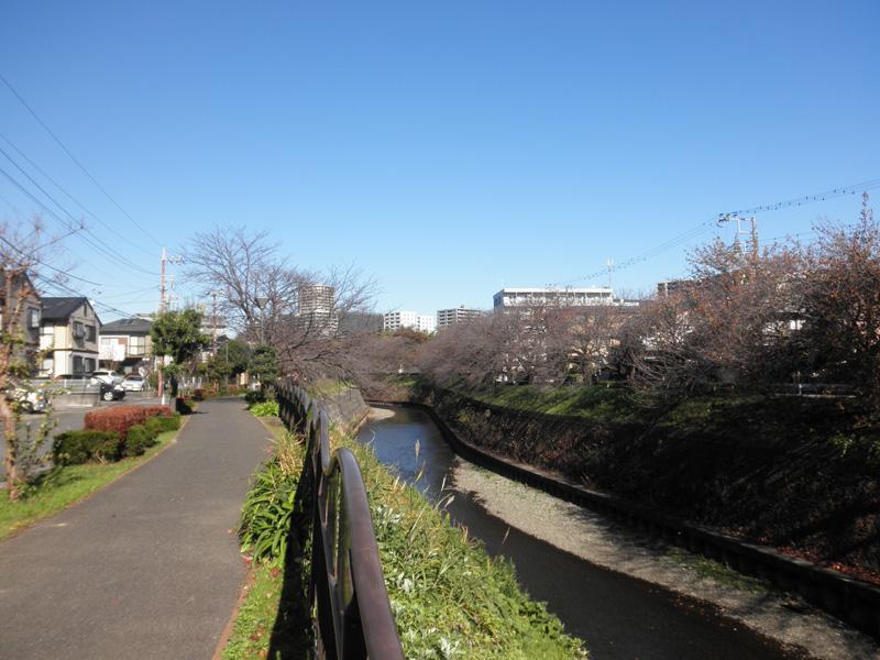 http://www.lounge-hill.com/img/hikichigawa01.jpg
